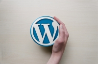 Il mondo di WordPress