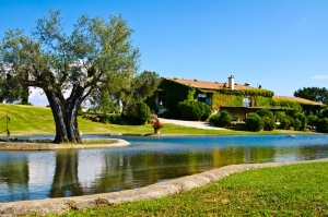 Siti web per agriturismi e bed & breakfast